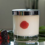 tropical-berry-candle